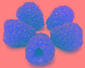 冷冻红树莓 覆盆子