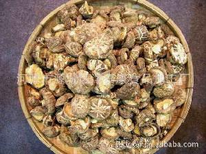 香菇 食用菌 蘑菇 草菇 鲜香菇 山珍