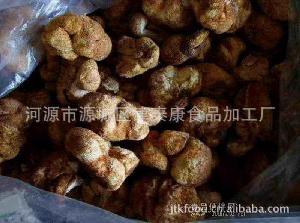 猴头菇 蘑菇  真菌 山珍