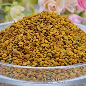 延缓皮肤老化、抗衰老精选花粉未破壁纯天然银杏蜂花粉 厂家直销
