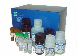 鸡单纯疱疹病毒Ⅱ型抗体(HSVⅡ-Ab)ELISA试剂盒