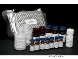 兔过氧化物酶体增殖因子活化受体γ(PPAR-γ)ELISA试剂盒