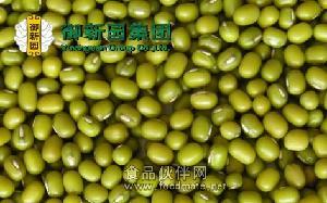 绿色健康 营养丰富 绿豆