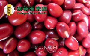 红豆传情 丝丝甘甜