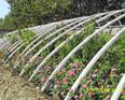 温室配件,温室工程,温室设备,日光温室
