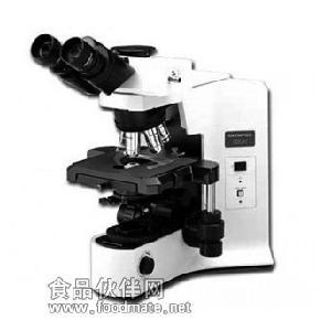 供應奧林巴斯BX41系列生物顯微鏡