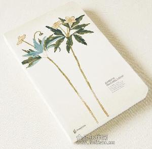 道林纸 厂家直销米黄/象牙白/纯质 道林纸