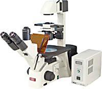 AE30/31倒置显微镜