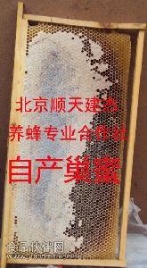 蜜蜂自酿原蜂巢蜜(蜂窝)
