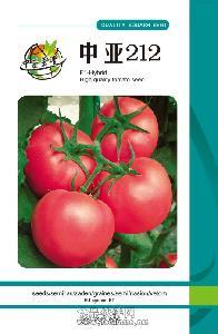 供應高產番茄種子中亞212,大棚番茄種子