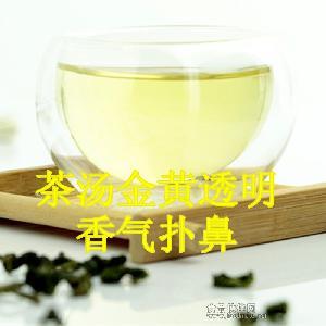 厂家直销批发 *款浓香型铁观音特级茶叶