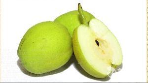 库尔勒香梨