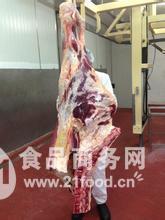 澳洲进口牛肉前后四分体